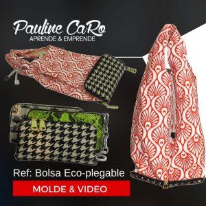 bolsa-eco